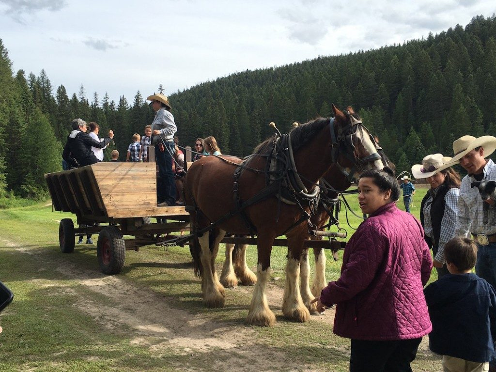 Wagon ride at the Rocky Mountain Neurological Society