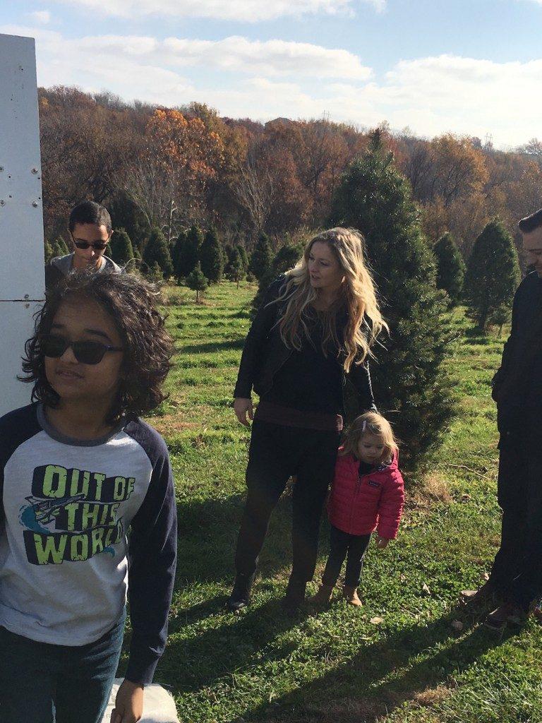Bierman's Christmas tree farm